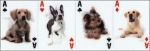 3-D Dog Cards