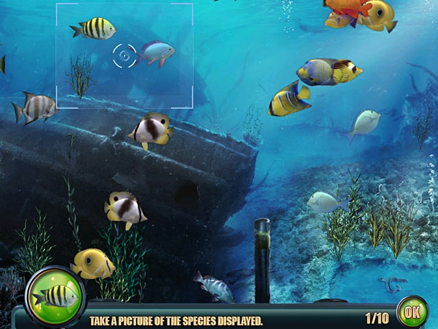 Nat Geo Adventure: Ghost Fleet Screenshot