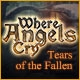 Where Angels Cry: Tears of the Fallen